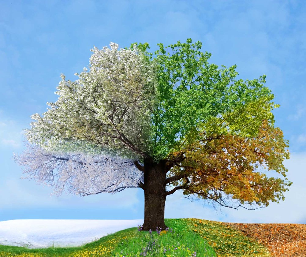 on changing seasons and not the ones that trigger allergies dr